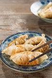 Asian cuisine pan fried dumplings