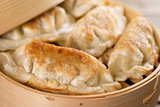 Chinese food pan fried dumplings