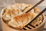 Chinese dish pan fried dumplings