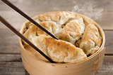 Popular Chinese gourmet pan fried dumplings