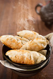 Popular Chinese dish pan fried dumplings