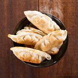 Popular Chinese meal pan fried dumplings