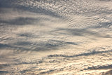 Altocumulus clouds in evening sky