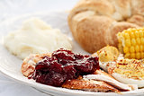 Cranberry Sauce Over Roast Turkey