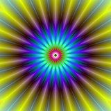 Sun Beam Flower