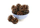Fir cones arranged in and around a blue and white bowl