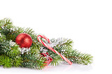 Christmas tree branch with snow and decor