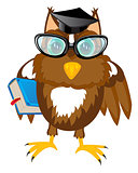 Owl teacher with book