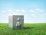 Metal safe on the grass. Safety concept.