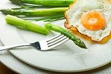 Fried egg in plate