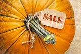 sale price tag on pumpkin