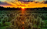 sun setting over country farm land in york south carolina