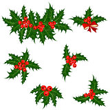 Holly berries set. Christmas symbol vector illustration