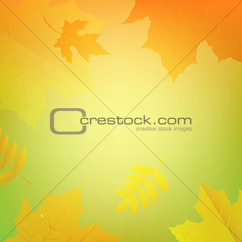 Autumn Banner With Color Leaves