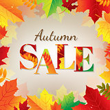 Autumn Sale Banner With Color Leaves