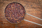 scoop of black quinoa grain