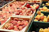 peaches and nectarines in the shop