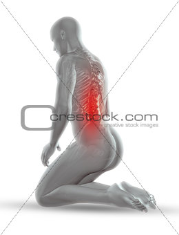 3D male medical figure with skeleton in kneeling position