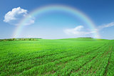 Green grass field, blue sky with rainbow