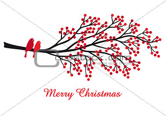 Christmas card with red berries and birds, vector