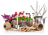 Spring still life daisies in wooden basket garden tools