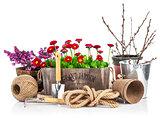 Spring still life daisies in wooden basket garden tools