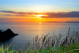 sunset over loop head with the wild tall grass