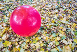 Swiss exercise ball outdoors