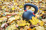 exercise kettlebell in maple leaves