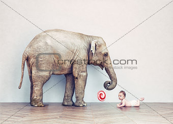 baby elephant and human baby