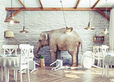 elephant calm in a restaurant interior