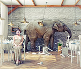 elephant calm in a restaurant