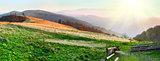 Autumn sunset mountain panorama (Carpathian Mt's, Ukraine)