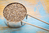 chia seeds in a metal scoop