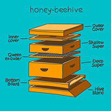 honey-beehive color