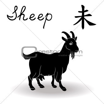 Chinese Zodiac Sign Sheep