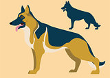 german shepherd and its silhouette