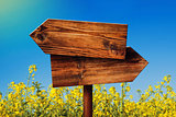 Blank Rustic Opposite Direction Wooden Sign in Rapeseed Field
