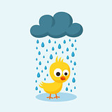 Sad Chick in the Rain on Friday the 13th.