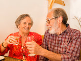 Old couple toasting