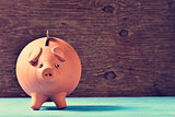 coin in a piggy bank