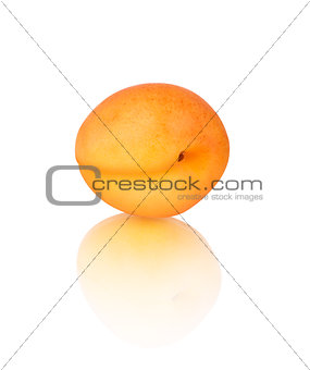Apricot with reflection isolated on white background