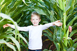 kid in corn maze