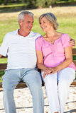Happy Senior Couple Sitting on Bench in Sunshine