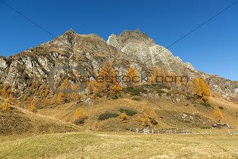 Autumn colors at the Devero Alp