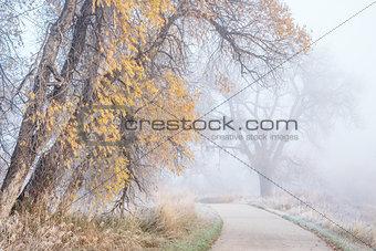foggy November morning on bike trail