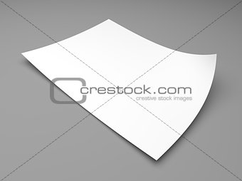 Blank sheet of white paper