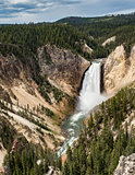 Yellowstone Fals