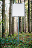 empty white sign in forest