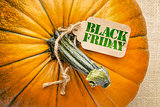 Black Fiday price tag iwth a pumpkin